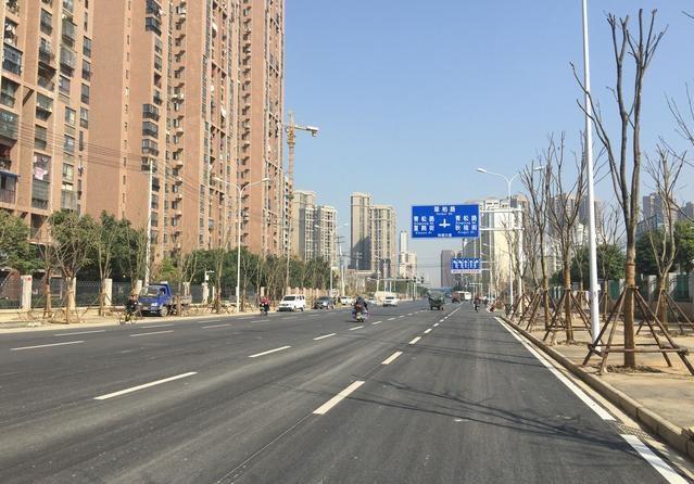 和谐大道(姑嫂树路—望湖路)道路排水工程基本完工.jpg