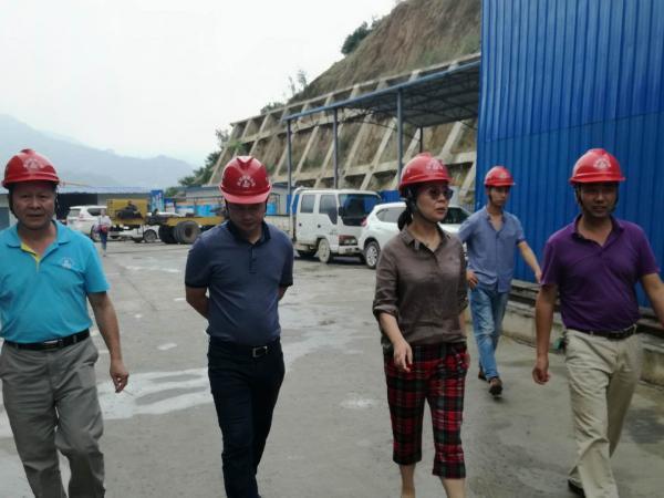 [s]桥梁公司领导到香溪长江公路大桥项目调研2.jpg